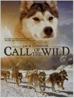 Harrison Ford Eyes 'Call of the Wild' (EXCLUSIVE)
