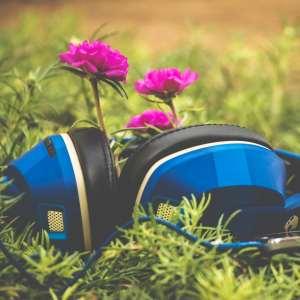 Audiobook Discussion