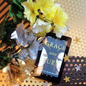 Grace and Fury ebook